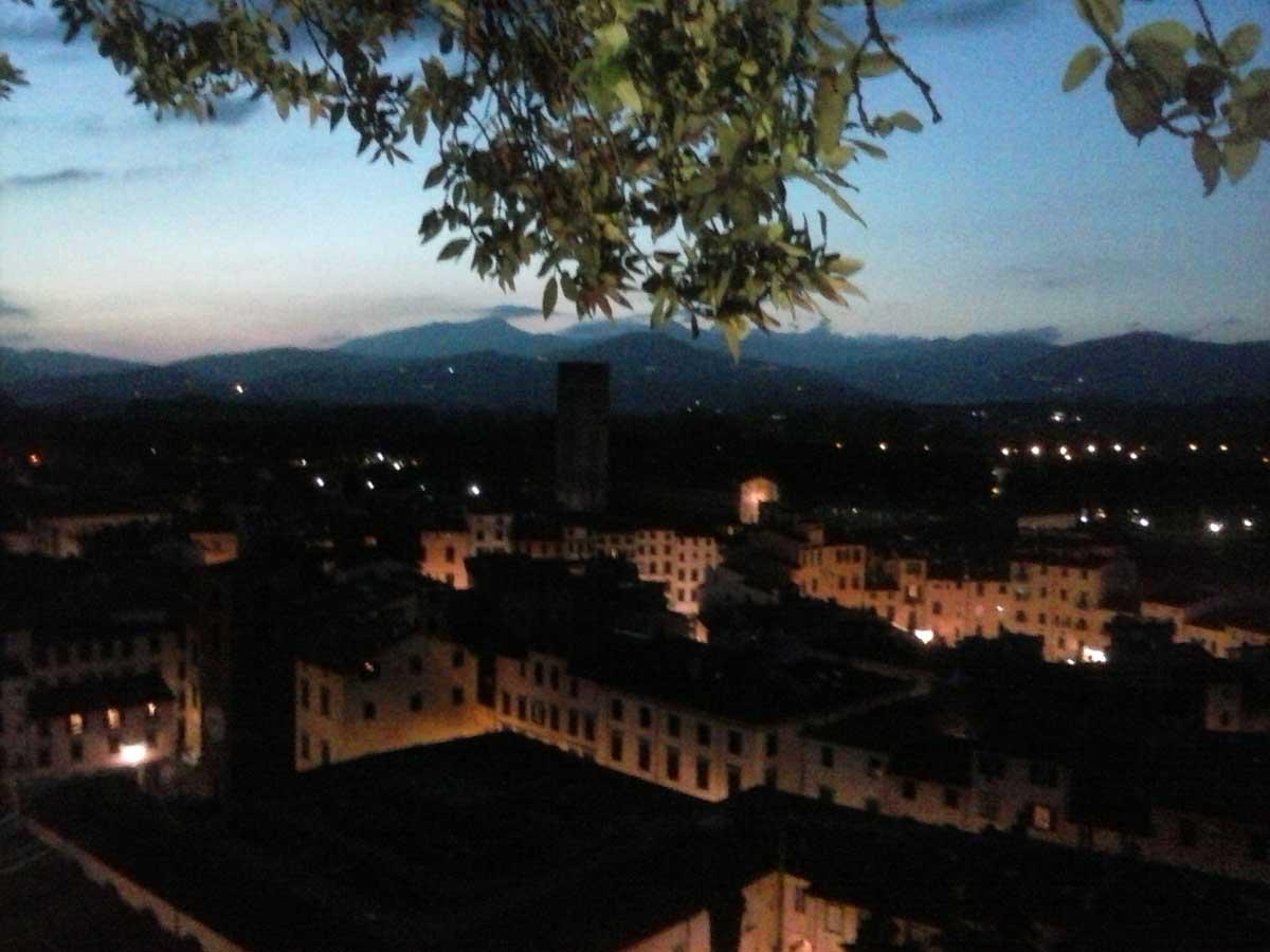 La vista dalla Torre Guinigi, Lucca