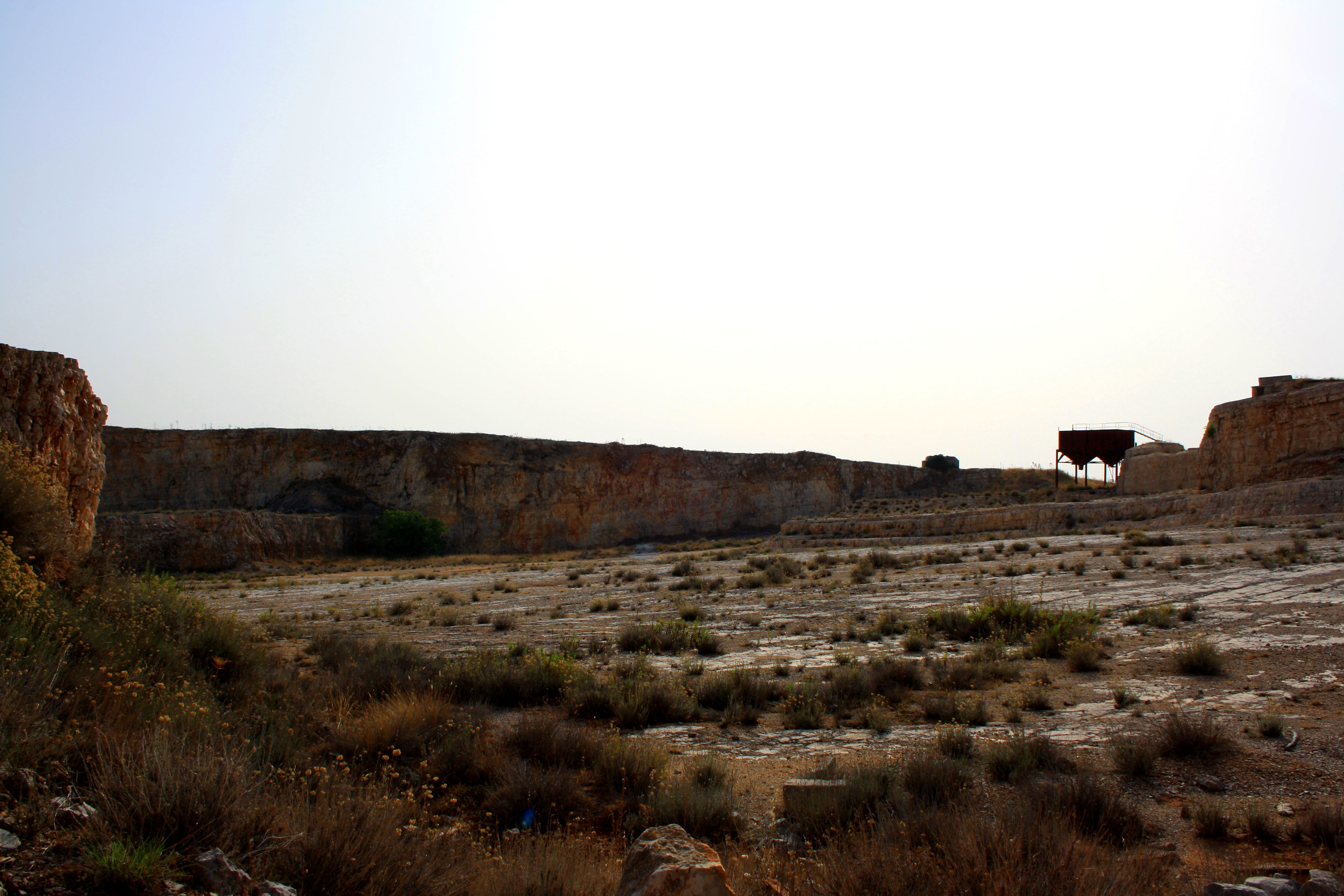 Cava Pontrelli, La Cava dei Dinosauri