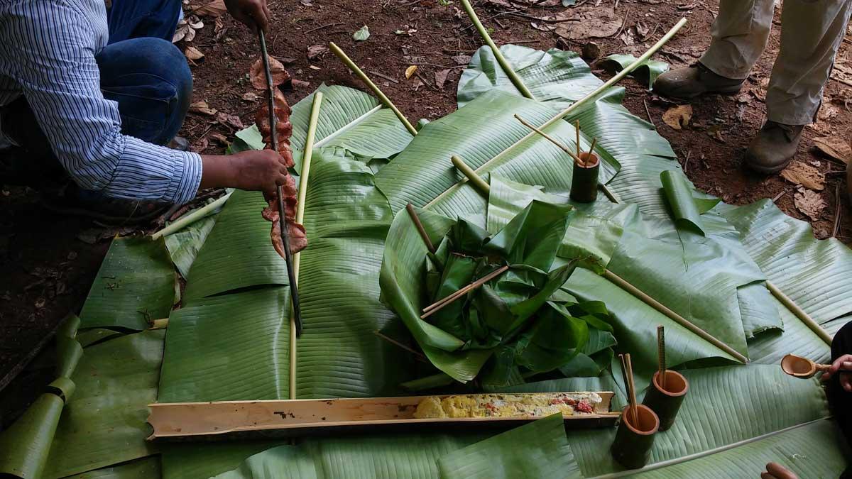 pranzo, Trekking nella giungla