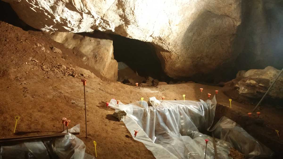 Grotta del Leone