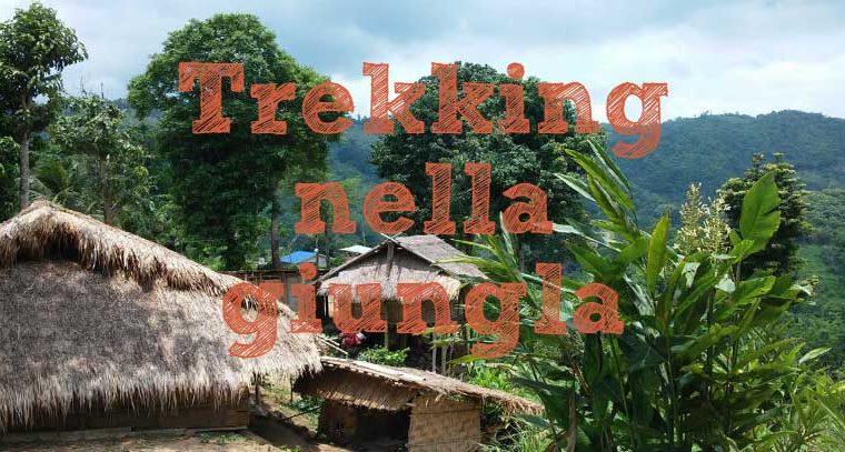 Un giorno nella giungla facendo trekking in Thailandia
