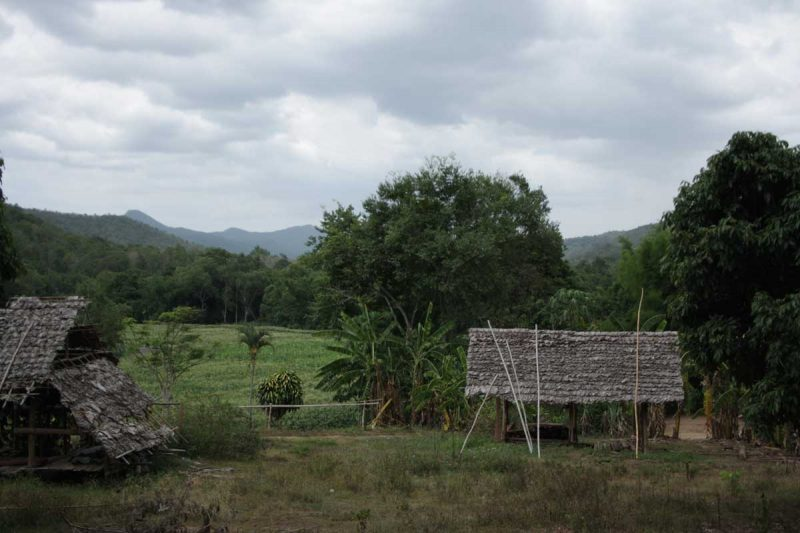 Una divertente escursione da Chiang Mai
