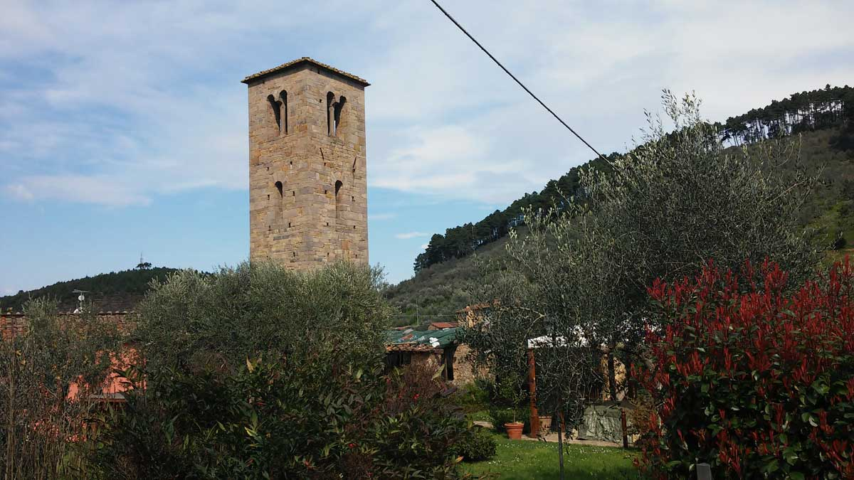 La Mostra delle Antiche Camelie della Lucchesia: tra Toscana e Giappone