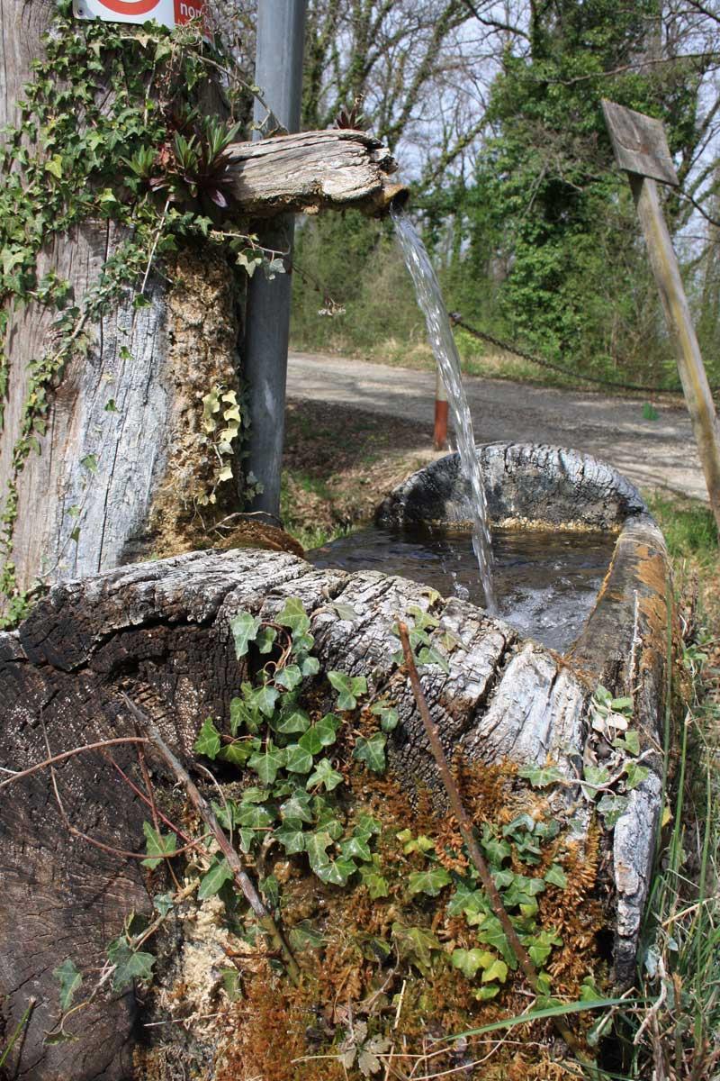 Escursione tra i boschi dei partigiani alla ricerca del Castello d'Elci, fontanella di acqua non potabile