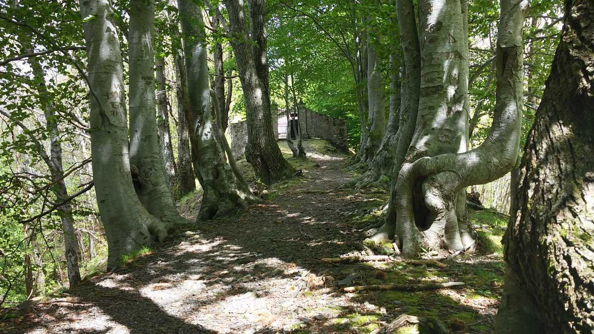 Città fantasma in Toscana, Col di Favilla