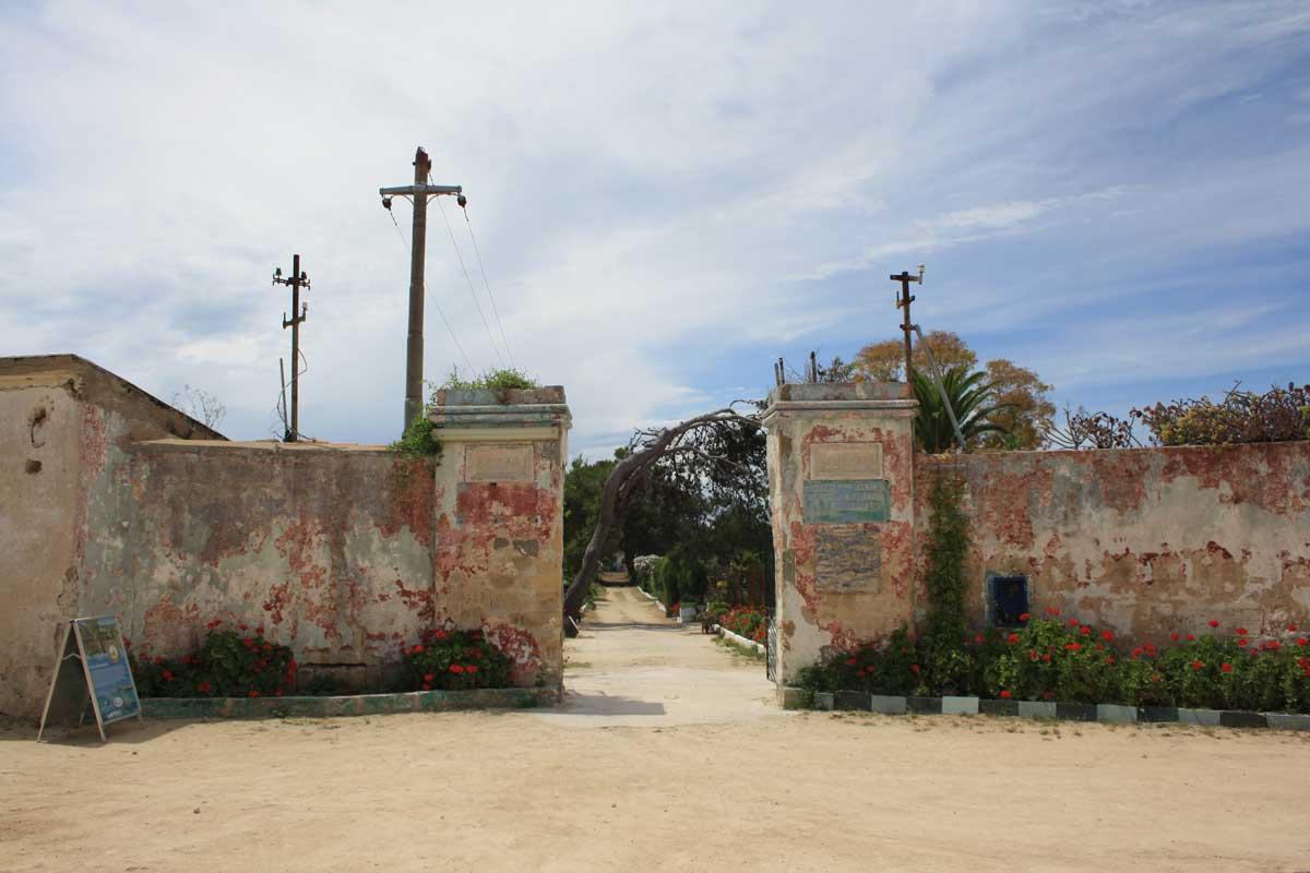 I caraibi in Toscana: l'isola di Pianosa, l'orto