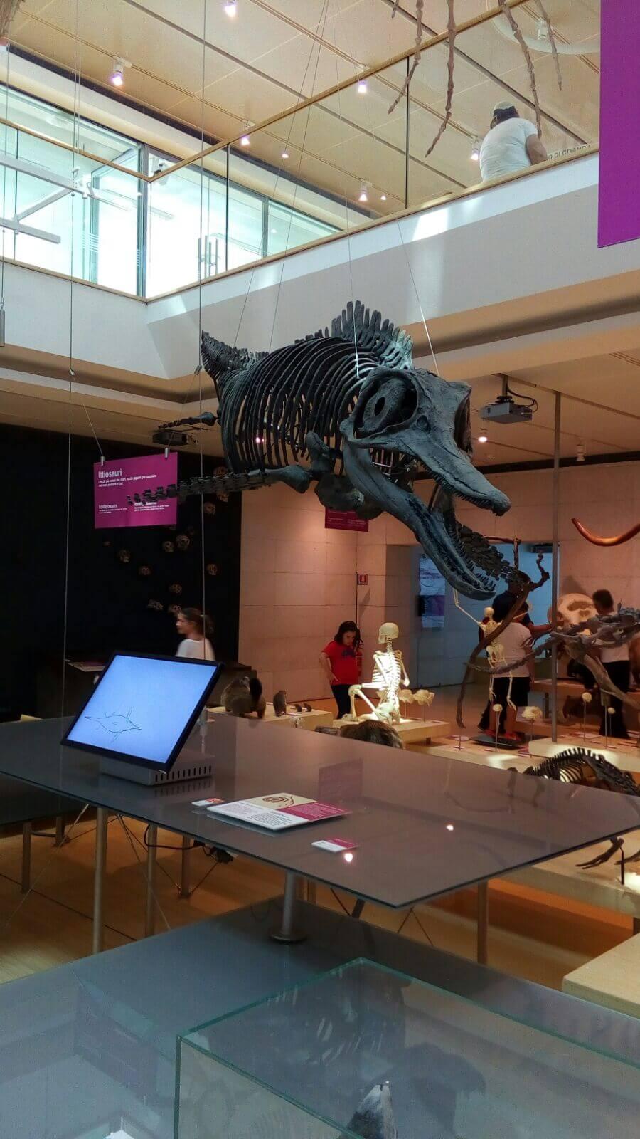 Museo della scienza di Trento