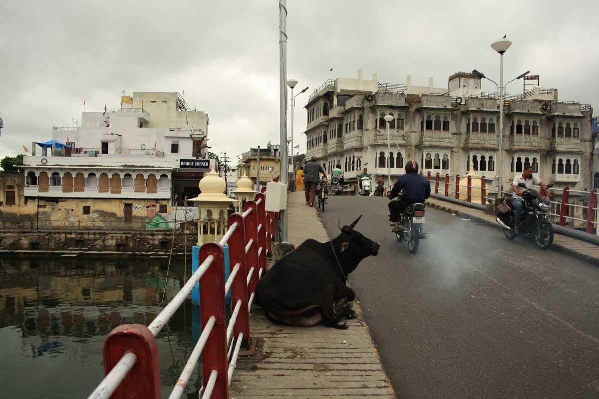 Udaipur, la Venezia d'Oriente, ponte