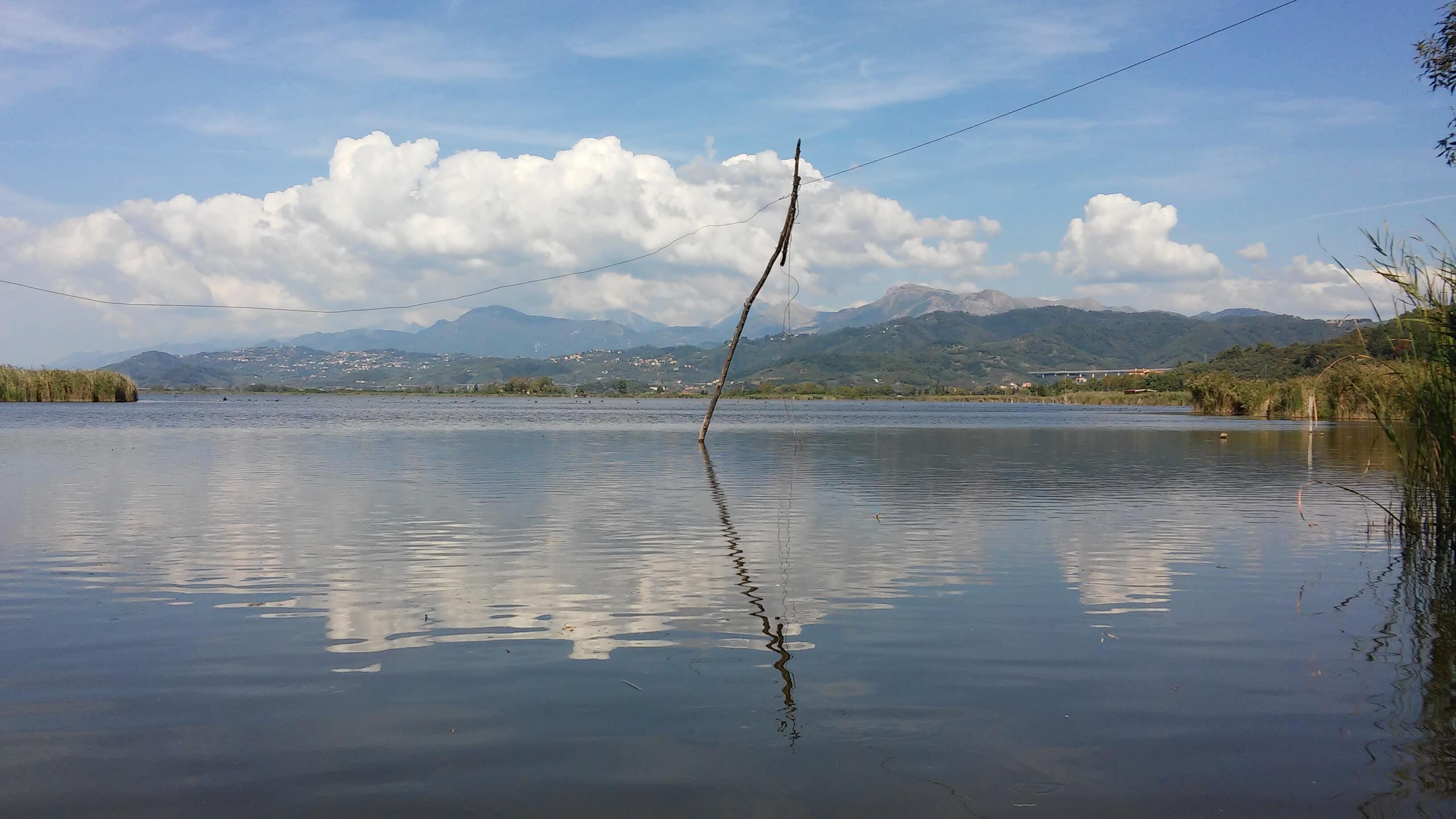 Lago Di Massaciuccoli, Oasi Lipu,