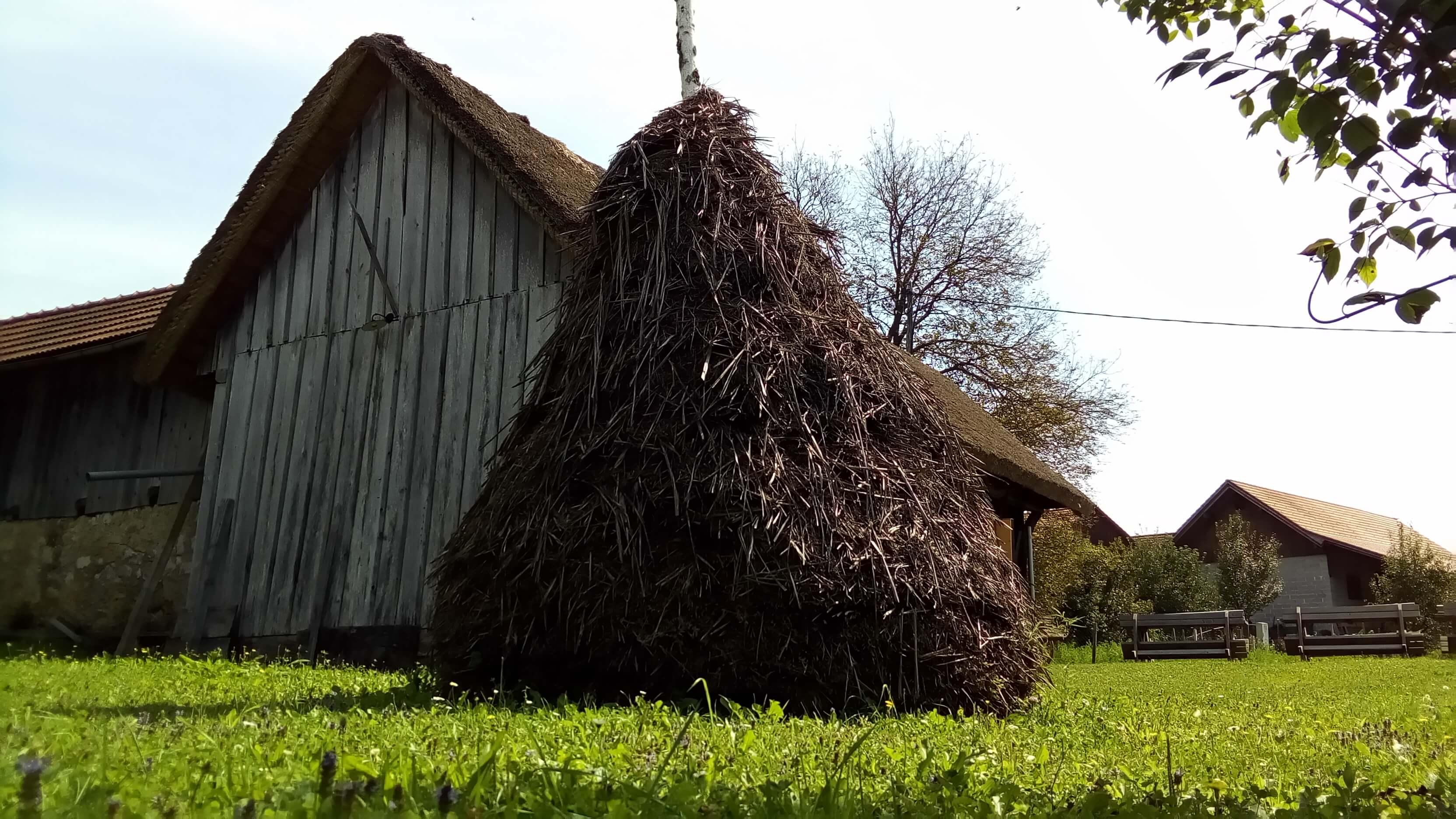 Slovenia, campagna