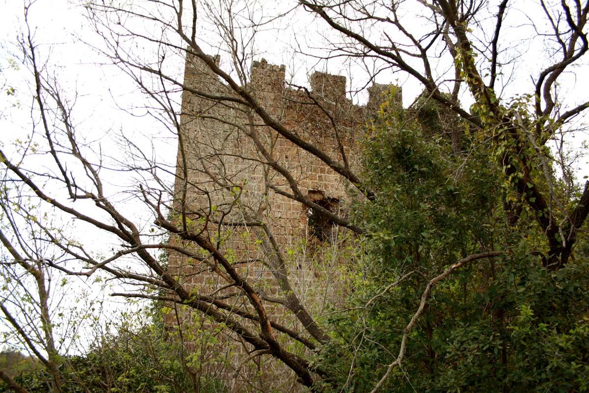 Norchia Antica, Castello dei Vico