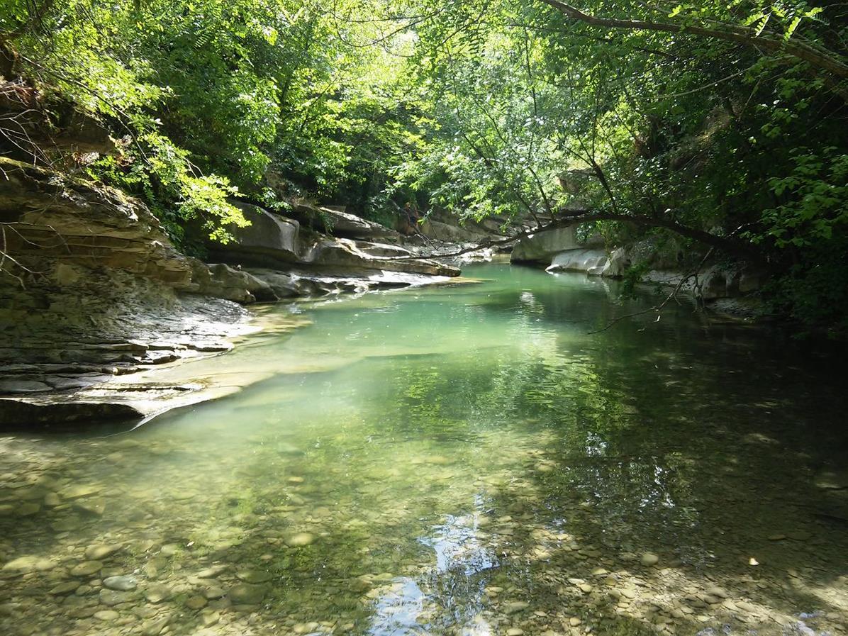 La grotta urlante e le piscine naturali del fiume rabbi - Piscine rocciose ...