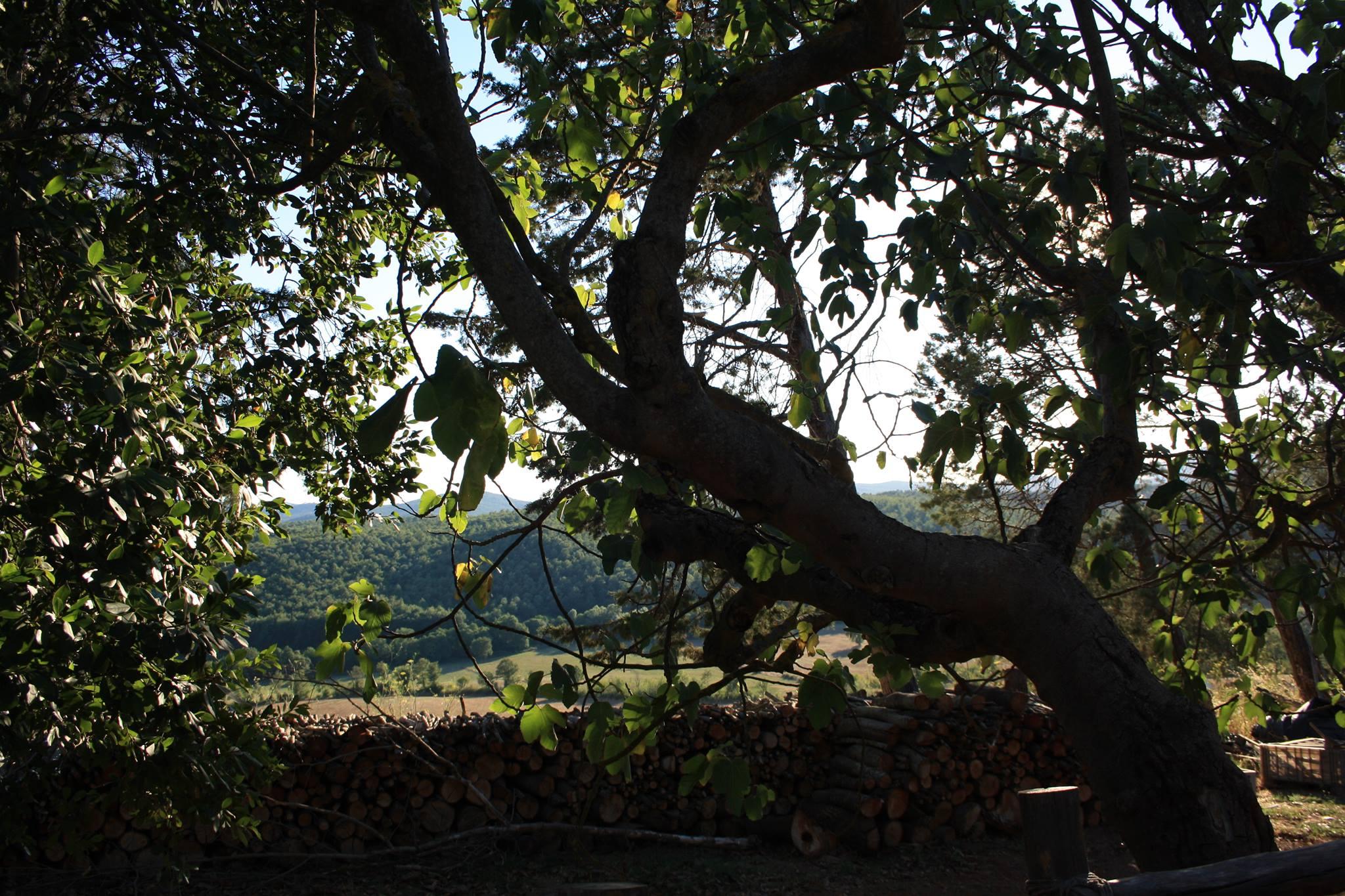 Luoghi insoliti: dormire in una yurta nella campagna toscana