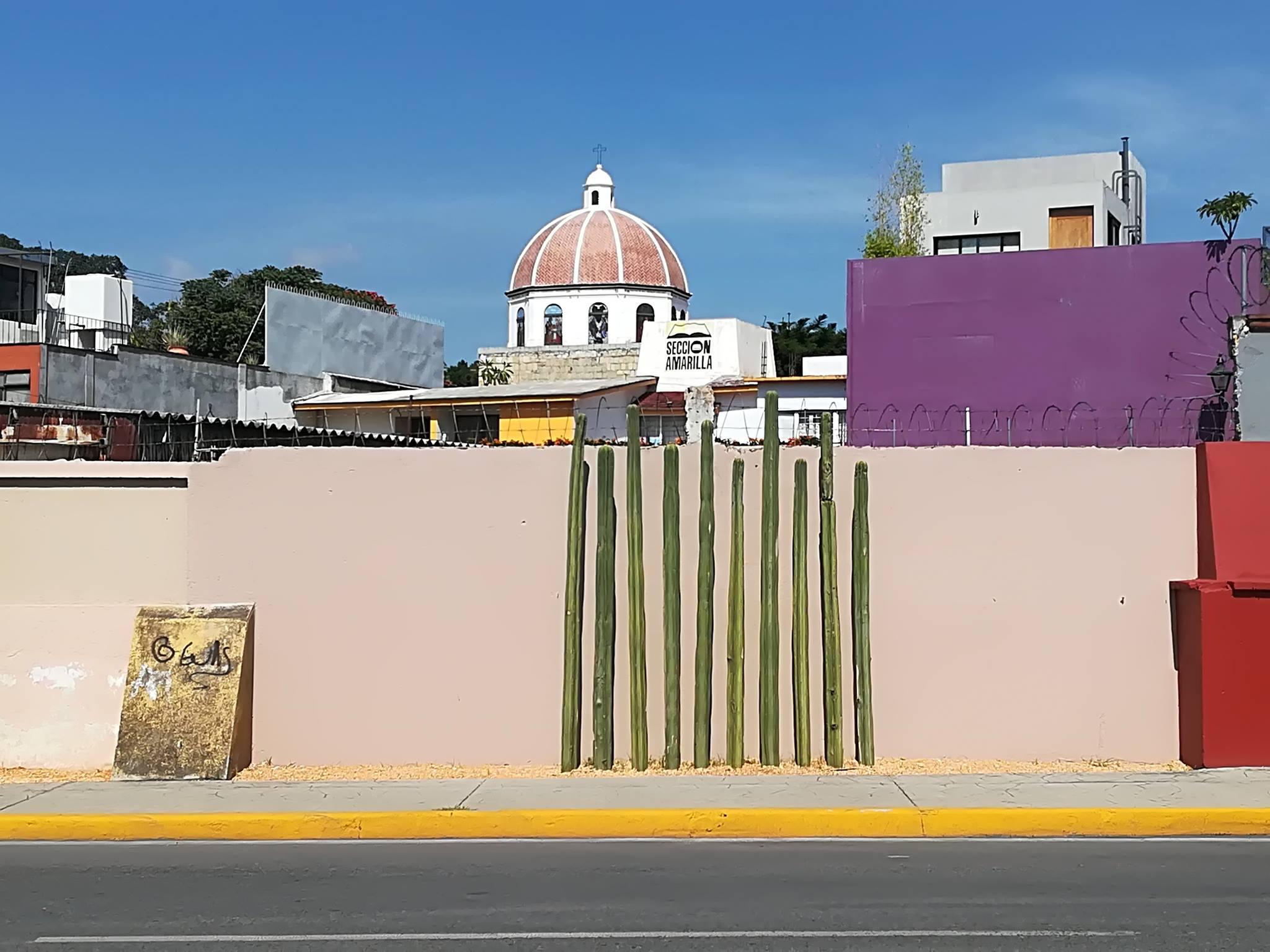 Viaggio in Messico: itinerario di 16 giorni, Oaxaca