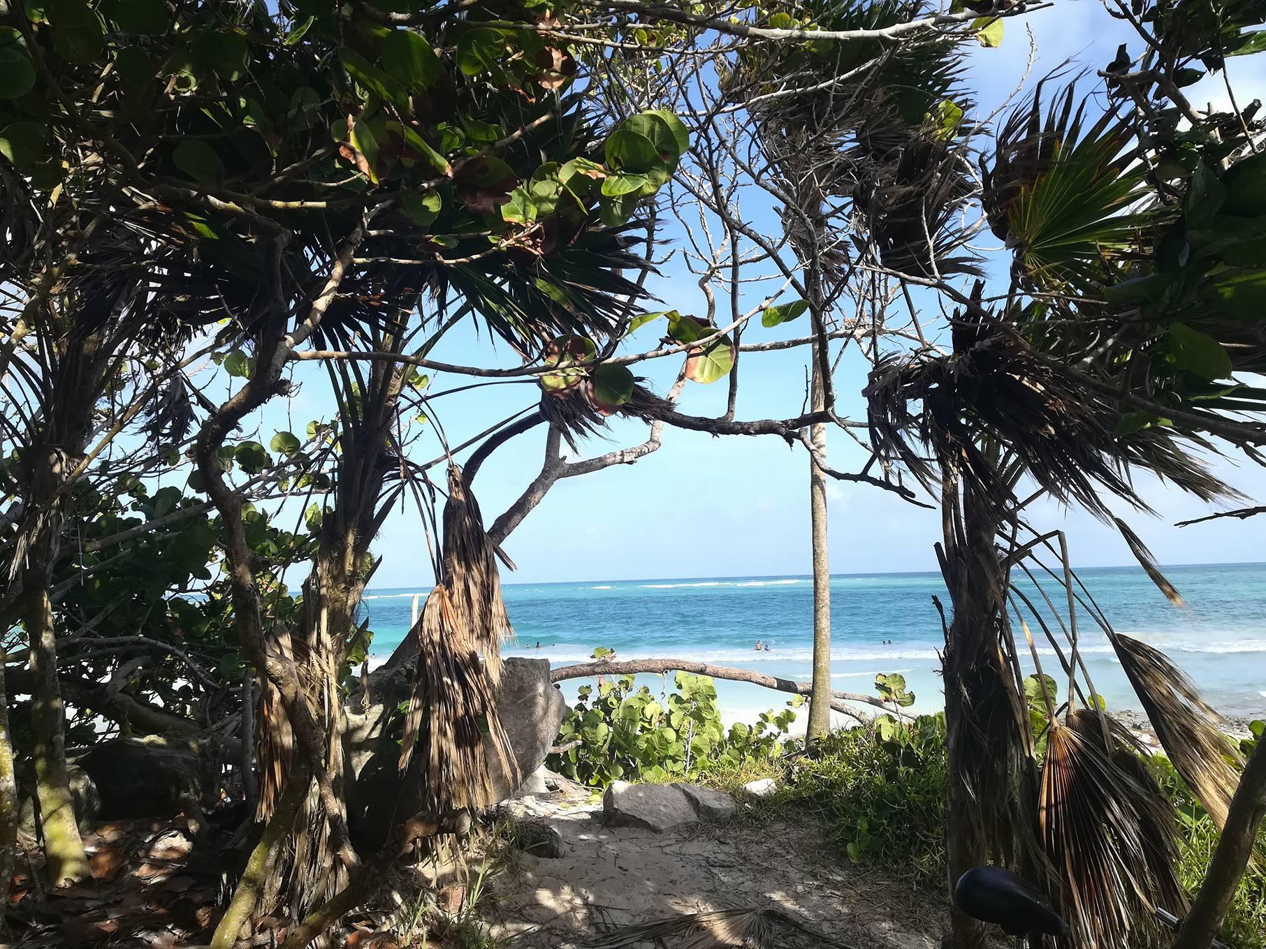 Tulum: spiagge caraibiche e rovine maya
