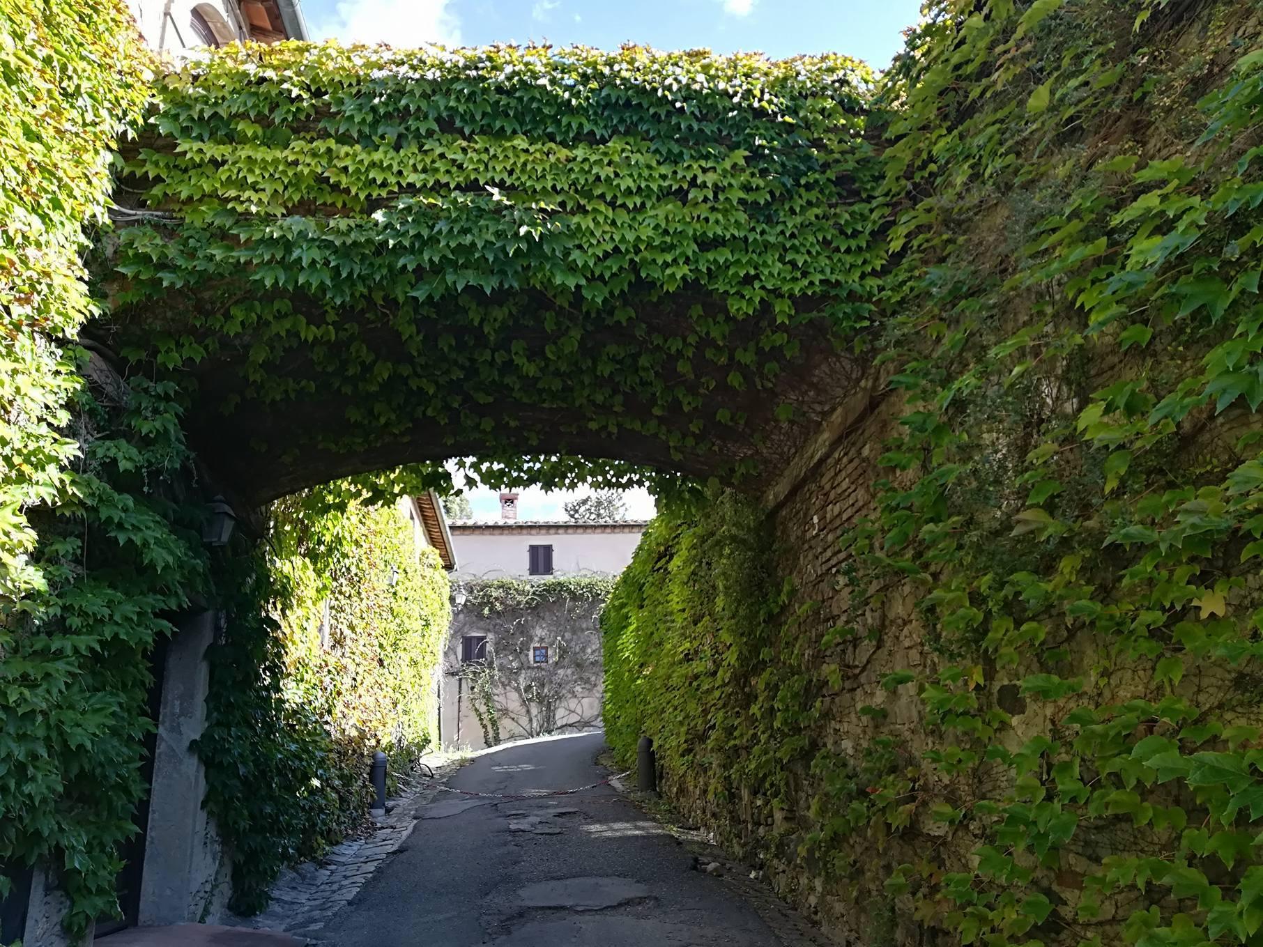 Borghi in Val di Cecina: alcune foto di Querceto
