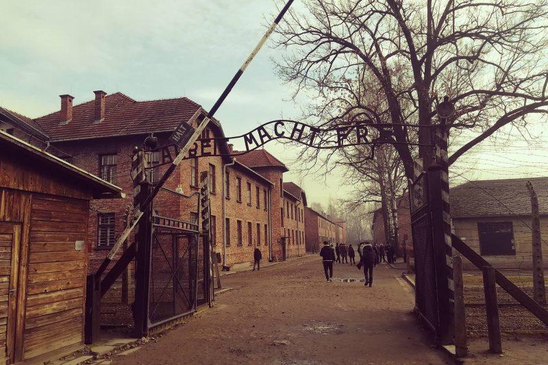 Auschwitz e Birkenau: l'orrore dell'uomo