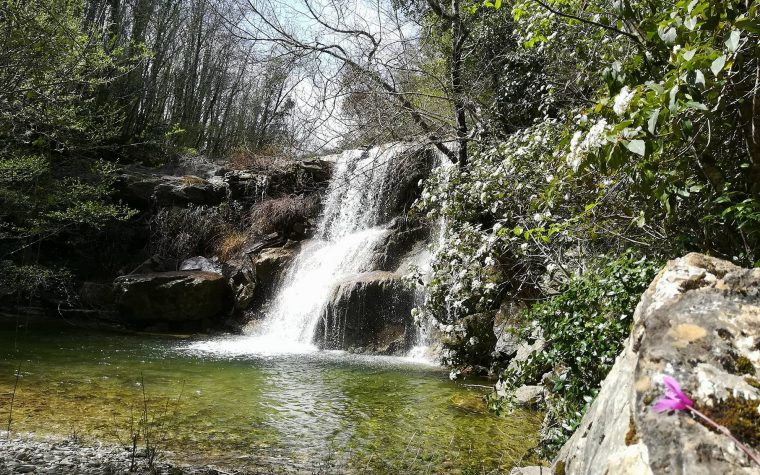 La Cascata dello Sterza e la Foresta di Caselli