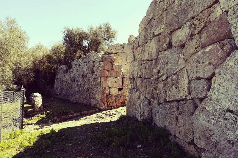 I templi e le mura ciclopiche della colonia romana di Cosa