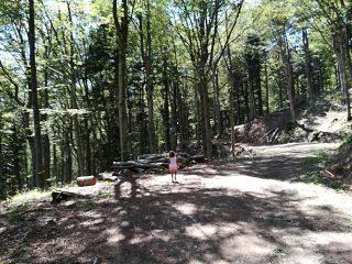 Passeggiata con bambini dalla Fonte di Calcedonia a Passo Calla