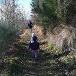 Un paese di presepi e un presepe nascosto nel bosco