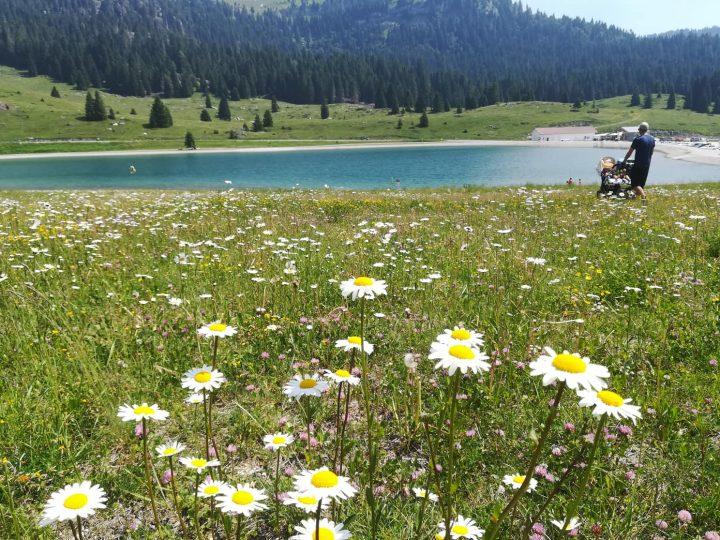 Trentino in passeggino