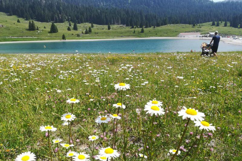 2 settimane in Trentino con passeggino