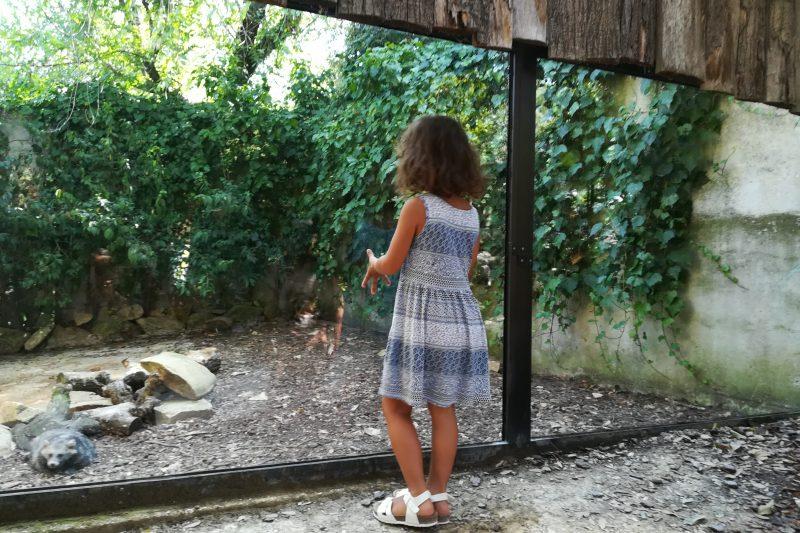 Il Parco Zoo Falconara