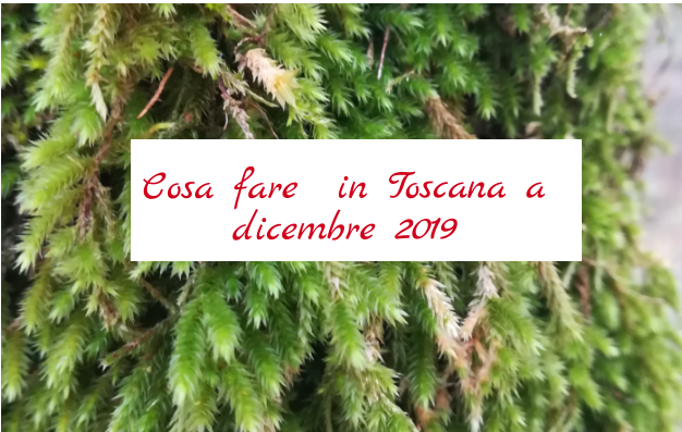 Cosa fare a dicembre 2019 in Toscana